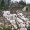 Great Atlantic Trenching Returns up to 9.7 oz./ton Gold Golden Promise Project, Newfoundland