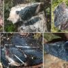 Boreal Metals shares up 10% on Norway cobalt project deal