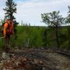 TerraX Minerals samples 5.50 m of 24.75 g/t gold at Ptarmigan on Eastbelt