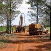 Scandium Int'l vows to proceed with Aussie mine
