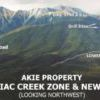 ZincX active on Akie Project