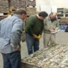 Osprey Gold up 33% on Nova Scotia results