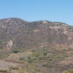 GoGold drills 11 metres of 529 g/t AgEq at Los Ricos