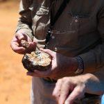 Orea up 44% on gold mine court decision